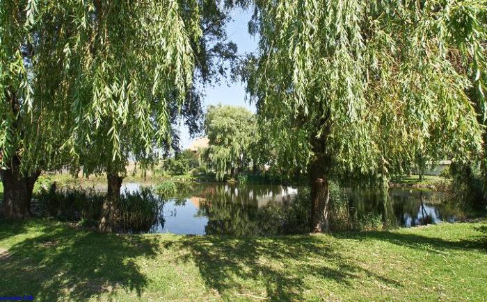 Zweifamilienhaus mit Teich in Hohenselchow-Groß Pinnow