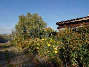 Großes Grundstück mit Bungalow und Sauna