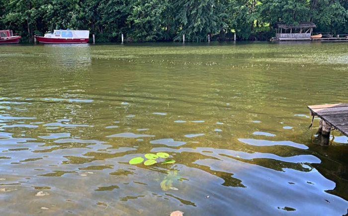 Wassergrundstück in Fürstenberg